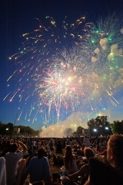 Spectators watch fireworks above Washington D.C.'s National Mall.
