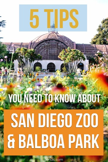 pinterest-5-tips-you-need-to-know-about-san-diego-zoo-and-balboa-park