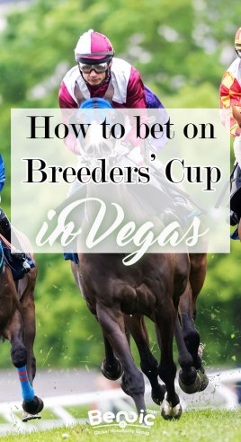 how to bet on Breeders' Cup in Vegas