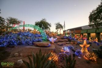 Ethel M Chocolates Cactus Garden